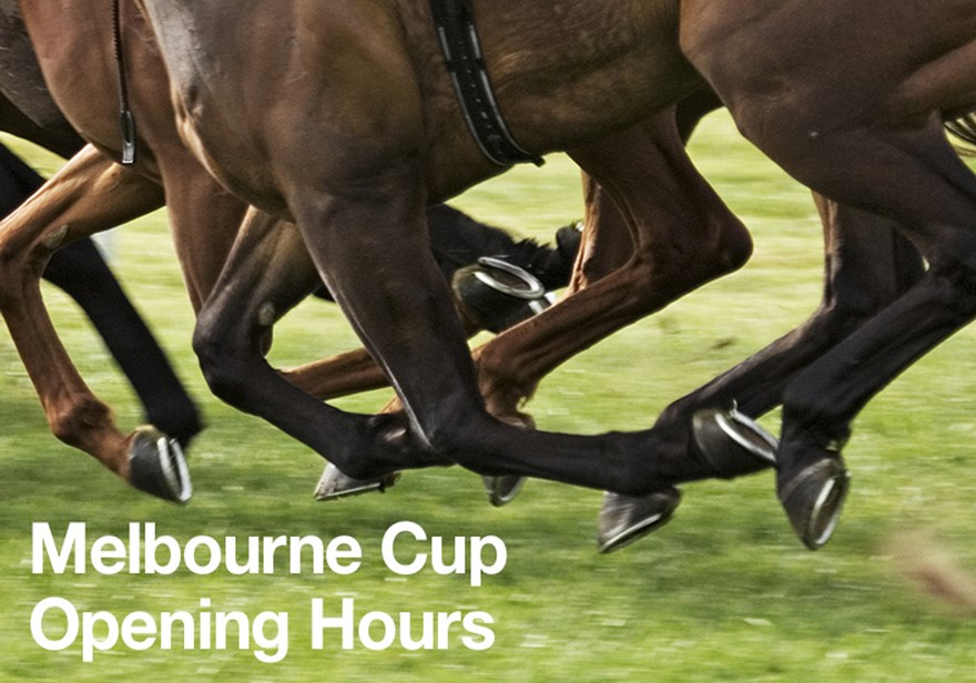VICTORIA: Dentists Open this Melbourne Cup Image