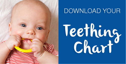 Download your Teething Chart