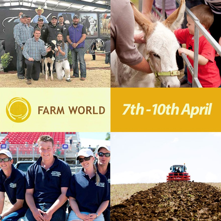 Gippsland dentists sponsor Farm World 2016 Image